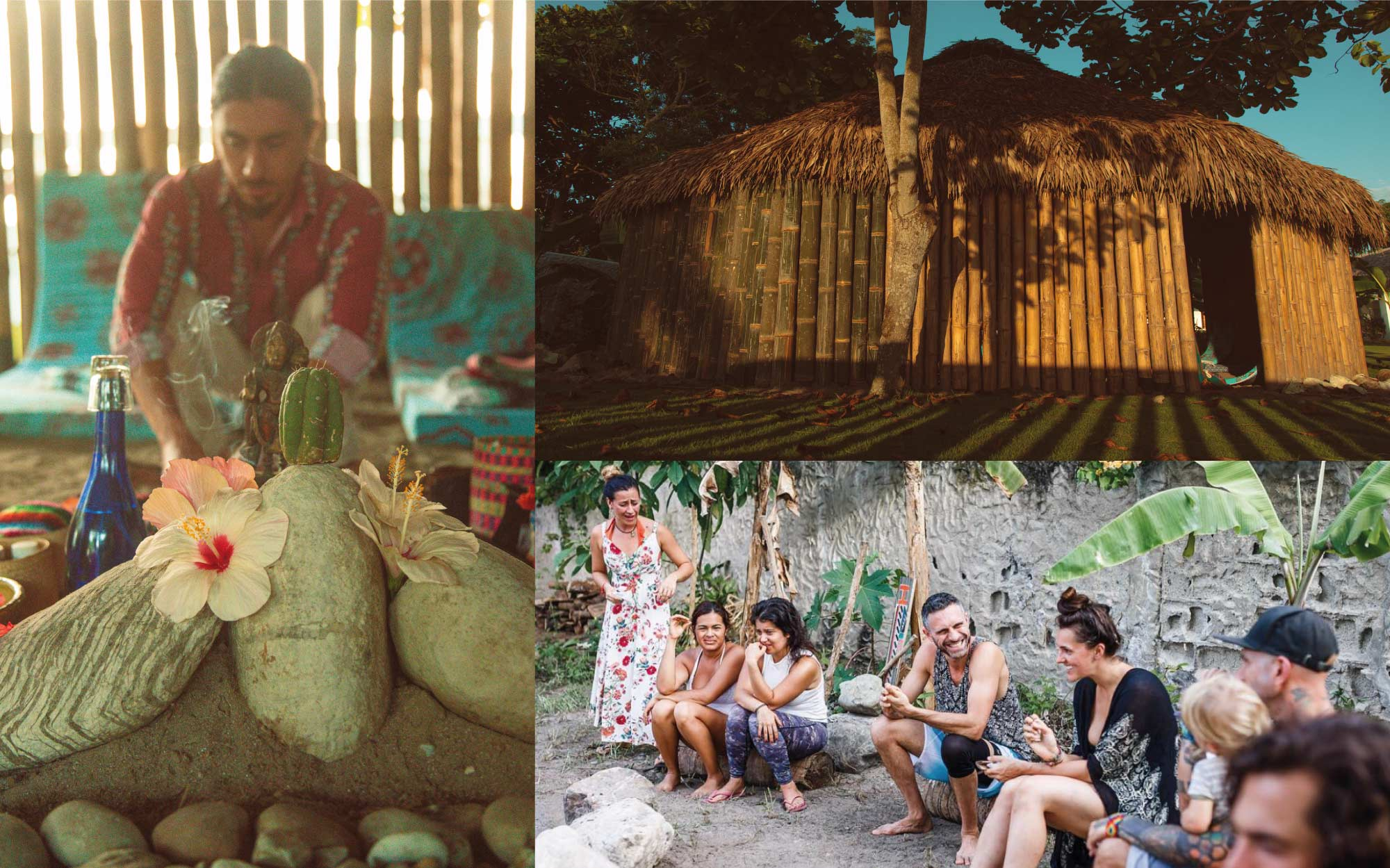 Ayahuasca retreat in Ecuador