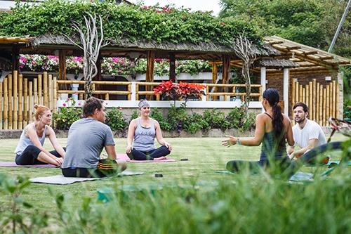 vikara-ecuador-food-yoga-surf-retreats-wellbeing-transformation-ayahuasca